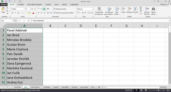 Text před rozdělením vtabulce vMicrosoft Excel